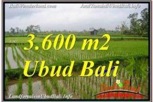 Beautiful PROPERTY LAND SALE IN UBUD BALI TJUB673