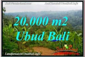 Affordable 20,000 m2 LAND IN UBUD PAYANGAN FOR SALE TJUB678