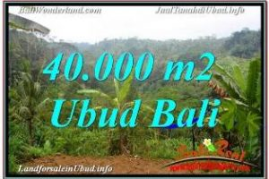 40,000 m2 LAND IN UBUD PAYANGAN BALI FOR SALE TJUB679