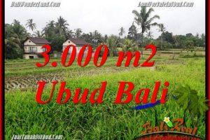 Affordable Property 3,000 m2 Land sale in Ubud Tegalalang TJUB698