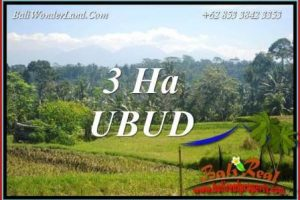 Magnificent 30,000 m2 Land in Ubud Tegalalang Bali for sale TJUB718