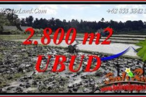 Exotic Property 2,800 m2 Land in Sentral Ubud Bali for sale TJUB722