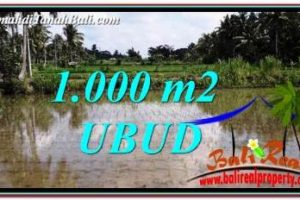 1,000 m2 LAND FOR SALE IN UBUD BALI TJUB753