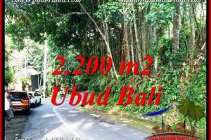 LAND IN UBUD FOR SALE TJUB768