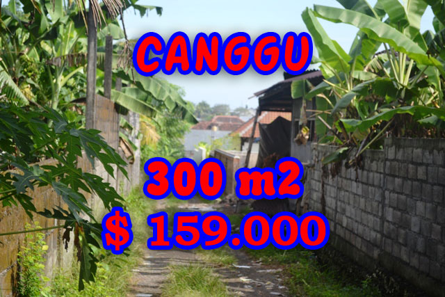 Land in Canggu for sale