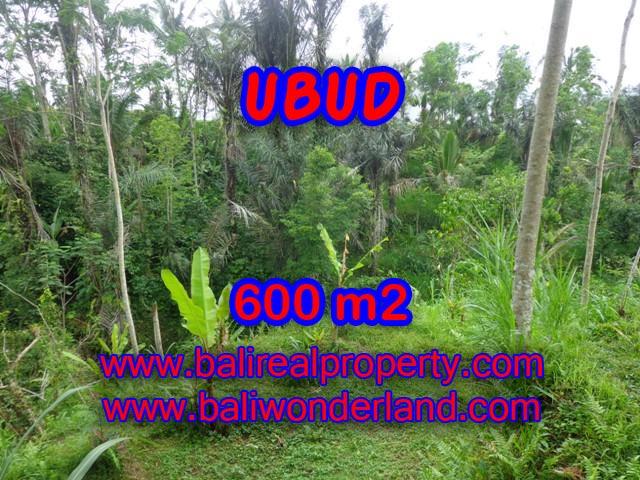 Beautiful Land for sale in Bali, paddy field view in Ubud Bali – TJUB346