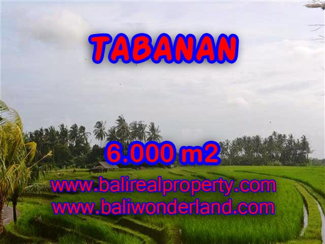 Land in Tabanan Bali for sale, nice view in Tabanan soka Bali – TJTB093