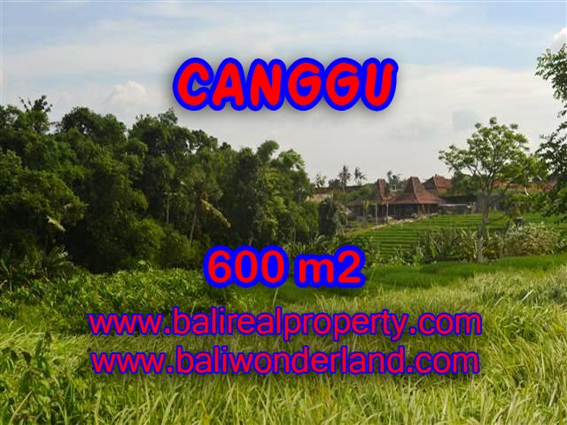 Land in Bali for sale, attractive view in Canggu Bali – TJCG130
