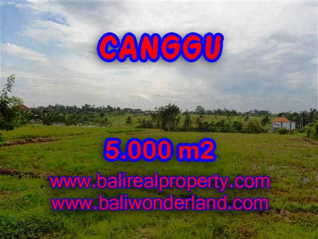 Land for sale in Bali, exceptional view in Canggu Babakan – TJCG132
