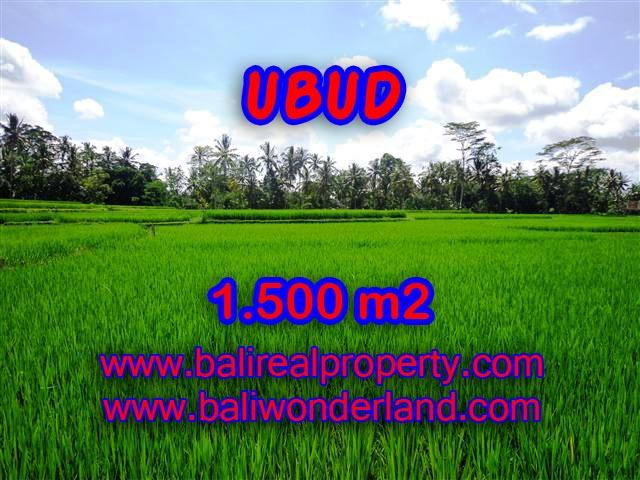 Amazing Land in Bali for sale in Ubud Center Bali – TJUB383