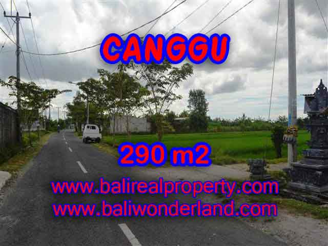 Stunning Land for sale in Bali, Paddy view in Canggu Bali - TJCG141