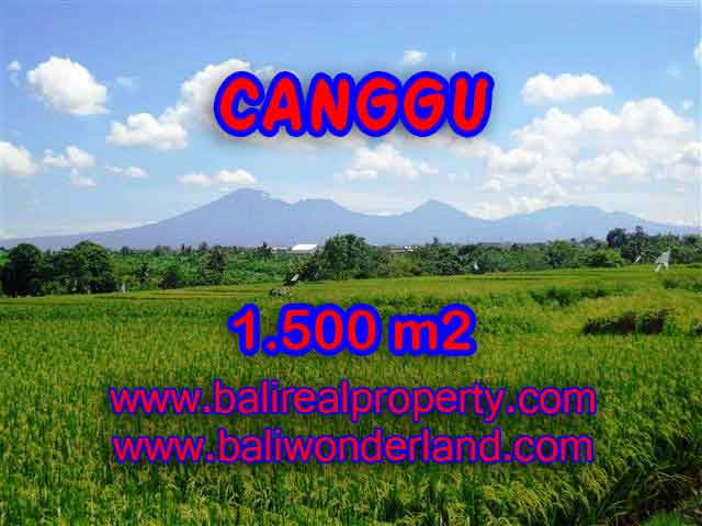 Land in Bali for sale, great view in Canggu Bali – TJCG144