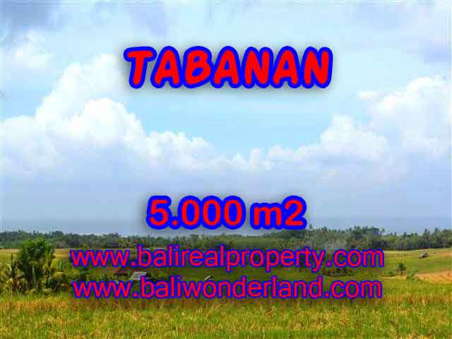 Amazing Land in Bali for sale in Tabanan Selemadeg Bali – TJTB124