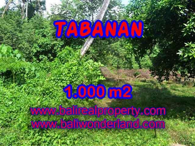 Land in Bali for sale, fantastic view in Tabanan Bali – TJTB114