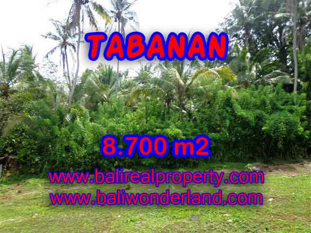 Fantastic Land for sale in Bali, Garden and river view in Tabanan Selemadeg – TJTB115