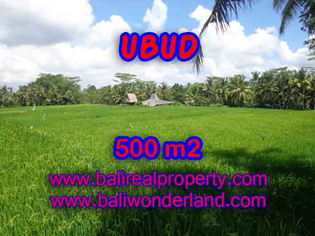 Magnificent Property in Bali for sale, land in Ubud Bali for sale – TJUB402