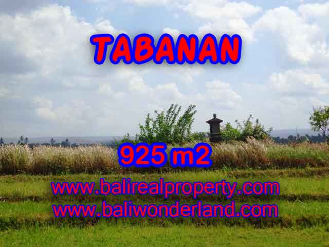 Property sale in Bali, Beautiful land in Tabanan for sale – TJTB135