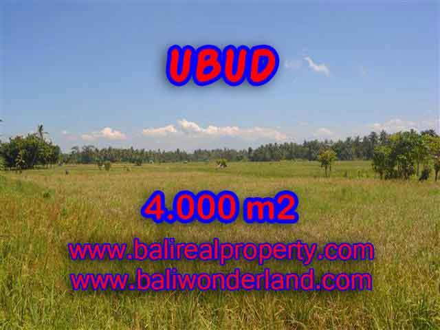 Wonderful Property in Bali for sale, land in Ubud Bali for sale – TJUB387
