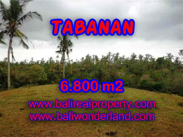 Exotic Property for sale in Bali, LAND FOR SALE IN TABANAN Bali – TJTB140