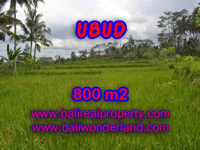 Astounding Property in Bali for sale, rice fields, Forest and River view land in Ubud Bali – TJUB393