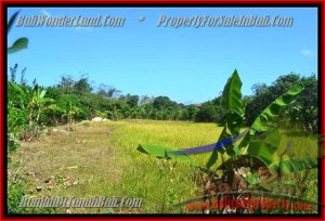 Beautiful PROPERTY 1,500 m2 LAND SALE IN JIMBARAN TJJI075
