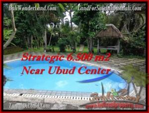 Beautiful 6,500 m2 LAND FOR SALE IN UBUD BALI TJUB479