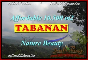 Affordable PROPERTY 10,500 m2 LAND SALE IN TABANAN BALI TJTB165