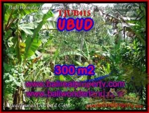 UBUD 300 m2 LAND FOR SALE TJUB415