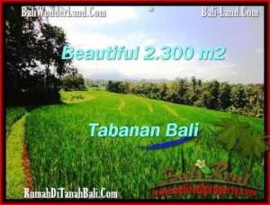 Beautiful PROPERTY TABANAN LAND FOR SALE TJTB209