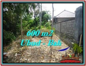 Beautiful PROPERTY Sentral Ubud 600 m2 LAND FOR SALE TJUB523