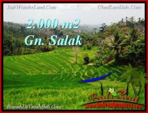 Affordable 2,000 m2 LAND FOR SALE IN TABANAN BALI TJTB220