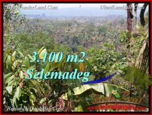 Exotic 3,100 m2 LAND IN TABANAN BALI FOR SALE TJTB222