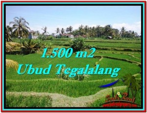 Affordable PROPERTY LAND IN UBUD FOR SALE TJUB528