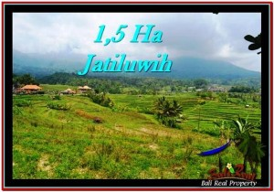 Affordable PROPERTY LAND FOR SALE IN TABANAN TJTB225