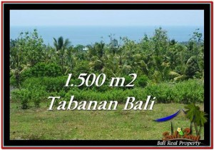 Exotic 1,500 m2 LAND IN TABANAN BALI FOR SALE TJTB234