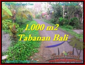 Beautiful TABANAN BALI 1,000 m2 LAND FOR SALE TJTB242