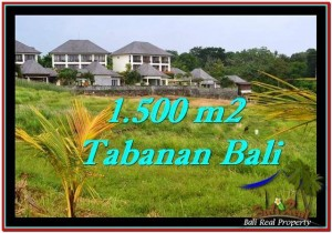 Affordable 1,500 m2 LAND FOR SALE IN TABANAN BALI TJTB252