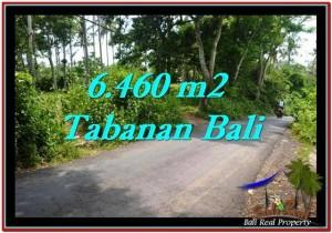 Exotic LAND SALE IN Tabanan Selemadeg BALI TJTB256