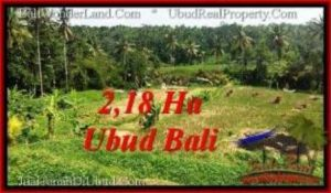 FOR SALE Magnificent PROPERTY LAND IN UBUD TJUB546