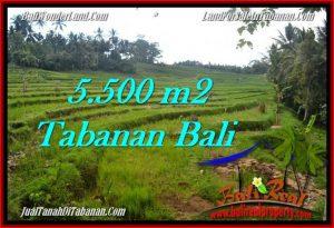 Tabanan Penebel BALI LAND FOR SALE TJTB280