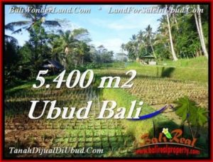 FOR SALE Exotic LAND IN Ubud Payangan BALI TJUB554