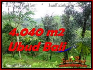 Magnificent UBUD BALI 4,040 m2 LAND FOR SALE TJUB555