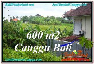 Magnificent LAND FOR SALE IN Canggu Brawa BALI TJCG206