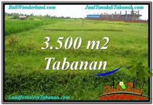 Exotic 3,500 m2 LAND FOR SALE IN TABANAN BALI TJTB302