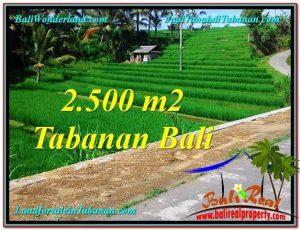 Affordable PROPERTY 2,500 m2 LAND SALE IN TABANAN BALI TJTB305