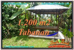 Beautiful TABANAN BALI 1,200 m2 LAND FOR SALE TJTB294