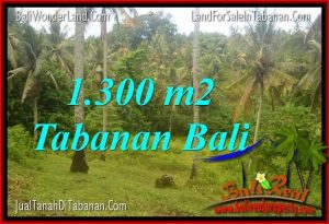 Magnificent TABANAN 1,300 m2 LAND FOR SALE TJTB314