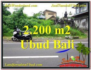 Exotic PROPERTY 2,200 m2 LAND IN Sentral Ubud FOR SALE TJUB565