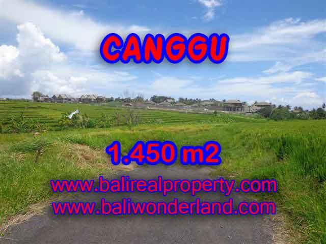 Land for sale in Bali, astonishing view in Canggu Cemagi Bali – TJCG137