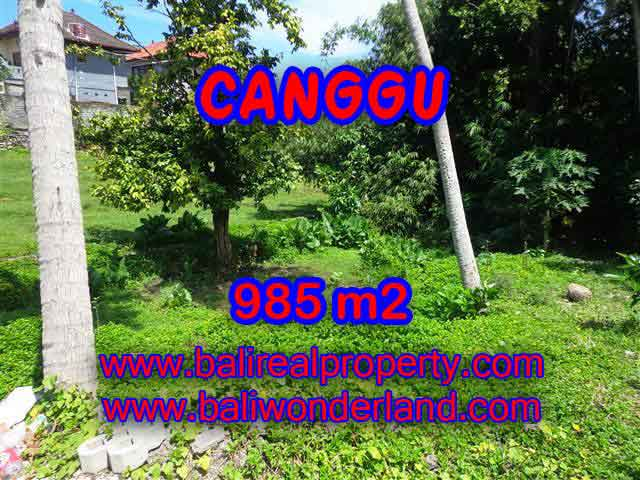 Land for sale in Bali, spectacular view in Canggu Bali – TJCG147